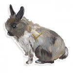 768-gd-CL002_lapin_large